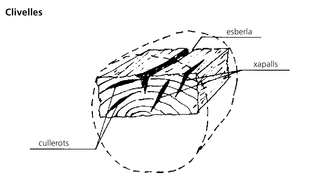 Image from term result on cercaterm
